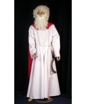 https://malle-costumes.com/1278/druide-gaulois.jpg