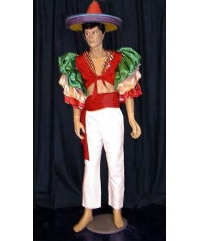 https://malle-costumes.com/2290/bresilien-paillettes-2.jpg