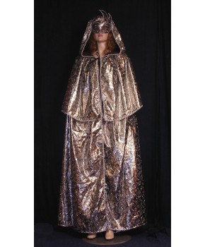 https://malle-costumes.com/3146/cape-argent-paillettes.jpg