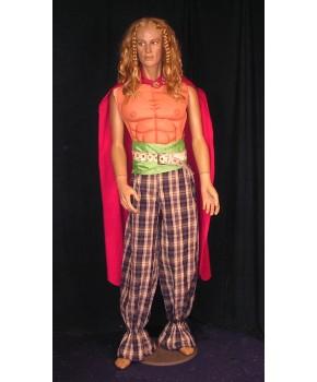 https://malle-costumes.com/3153/beau-gaulois.jpg