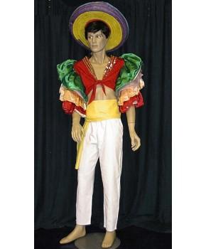 https://malle-costumes.com/3185/bresilien-paillettes-1.jpg