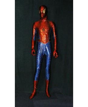 https://malle-costumes.com/3211/homme-araignee.jpg