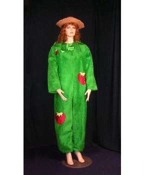 https://malle-costumes.com/7567/fraisier.jpg